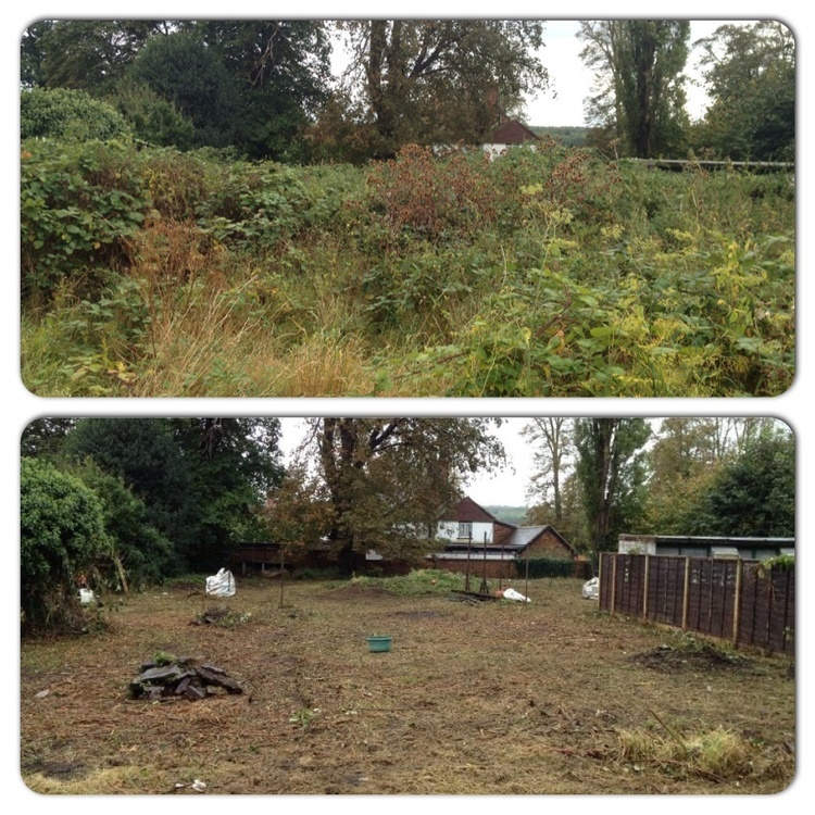 Garden Clearance, Waste and Disposal in Burnham on Sea, Weston Super Mare and Bridgwater